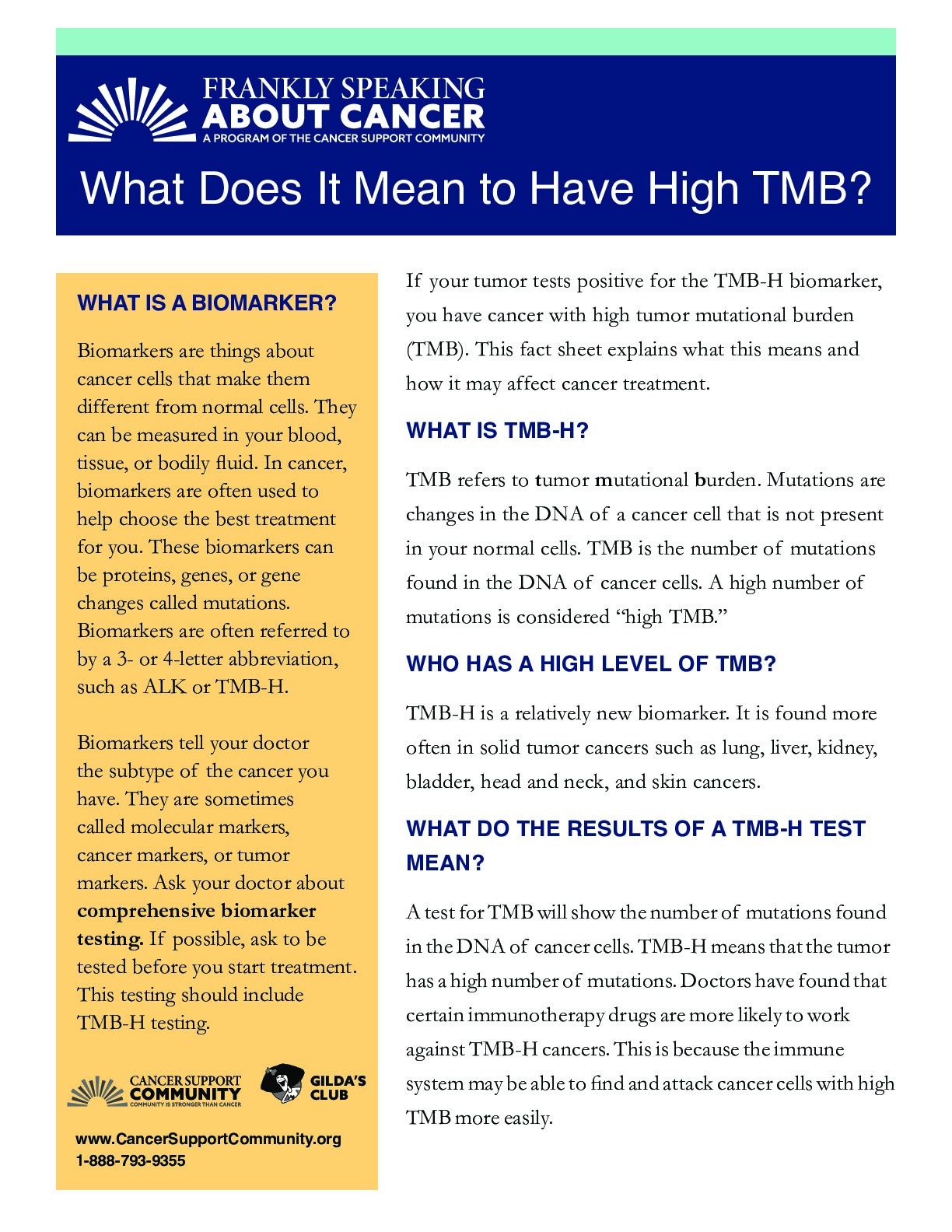 What Does It Mean to Have High TMB?