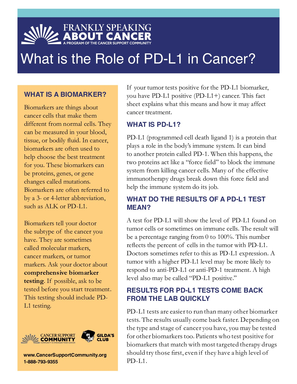 What Is the Role of PD-L1 in Cancer?
